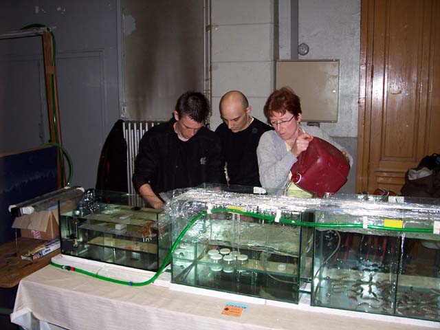 Installation de Coraline, Kauderni38 et Fredopipo